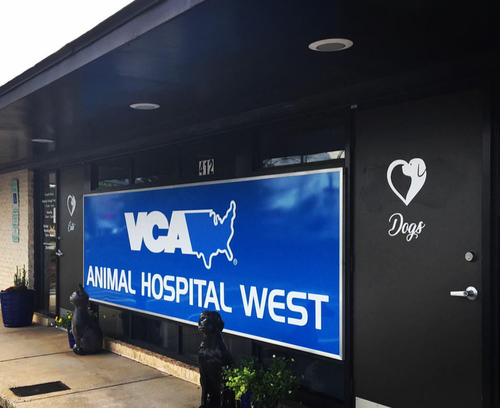Hospital Picture of VCA Animal Hospital West