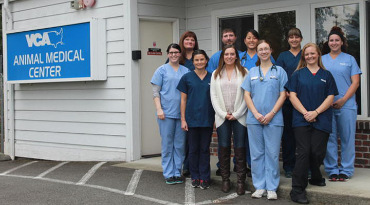 Homepage Team Picture of VCA Animal Medical Center Marysville