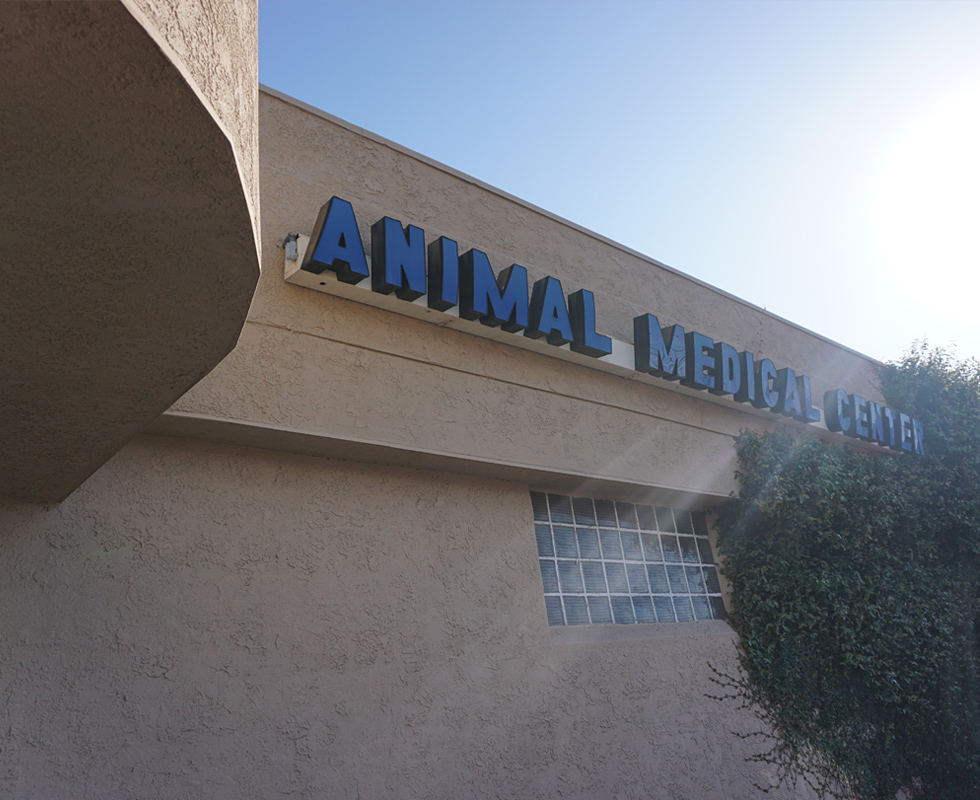 Hospital Picture of VCA Animal Medical Center