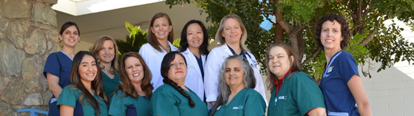Team Picture of VCA Animal Medical Tucson Animal Hospital
