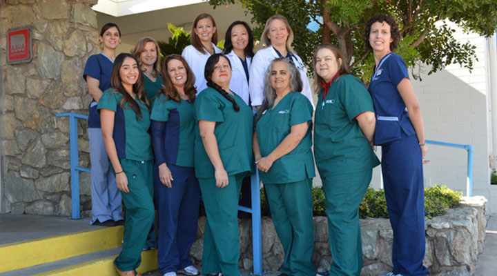 Homepage Team Picture of VCA Animal Medical Center Tucson