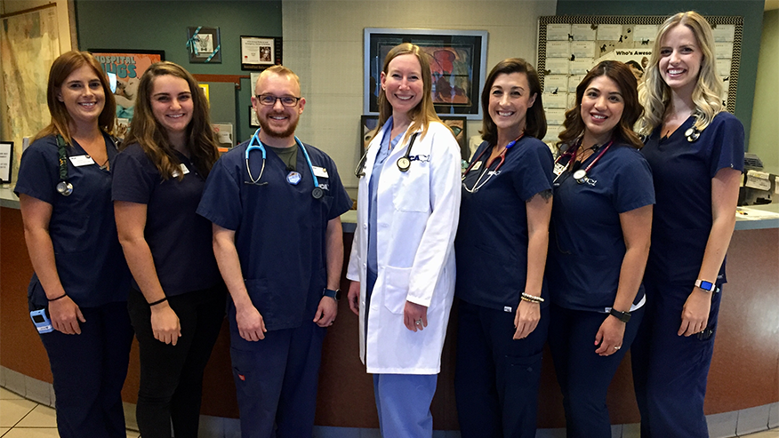 Internal Medicine Team at Animal Referral Arizona