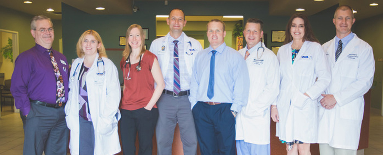 Homepage Team Picture of VCA Animal Referral Arizona Animal Hospital