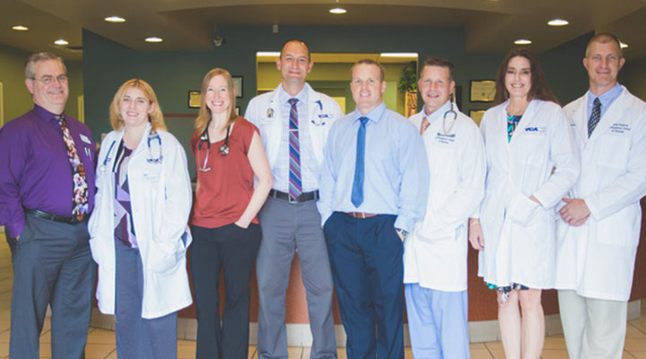 Homepage Team Picture of VCA Animal Referral Arizona Hospital