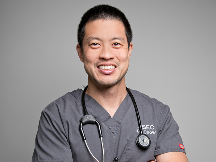 Dr. Chow