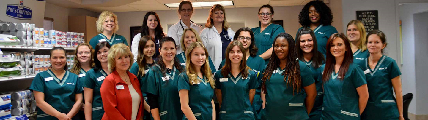 Team Picture of VCA Augustine-Loretto Animal Hospital