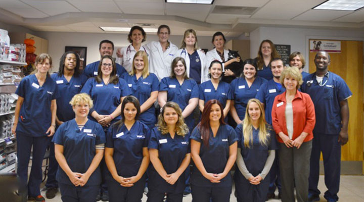 Homepage Team Picture of VCA Augustine Loretto Animal Hospital