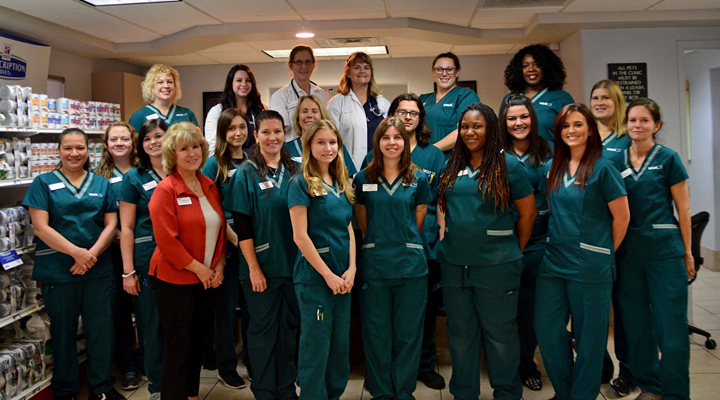 Homepage Team Picture of VCA Augustine-Loretto Animal Hospital