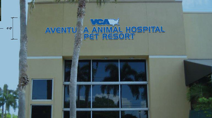 Hospital Homepage Picture of VCA Aventura Animal Hospital