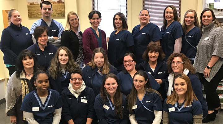 Homepage Team Picture of VCA Baybrook Animal Hospital