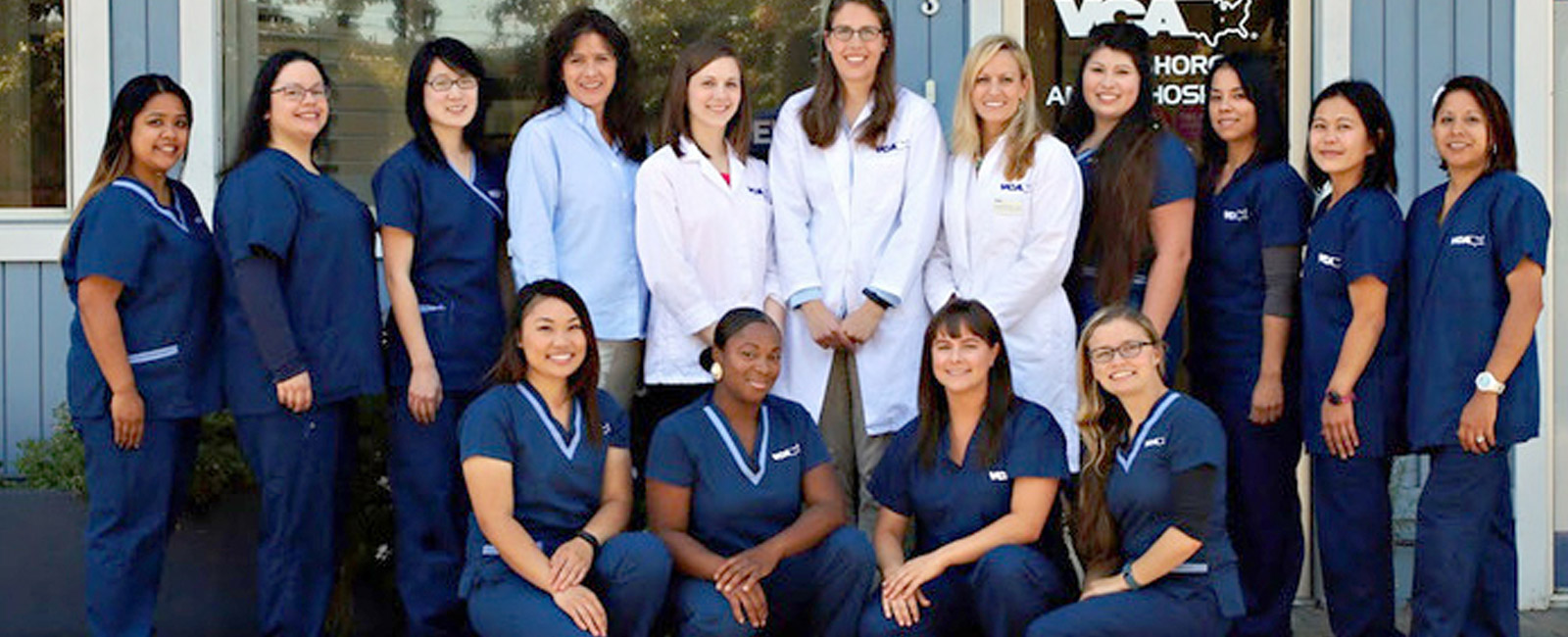 Homepage Team Picture of VCA Bayshore Animal Hospital