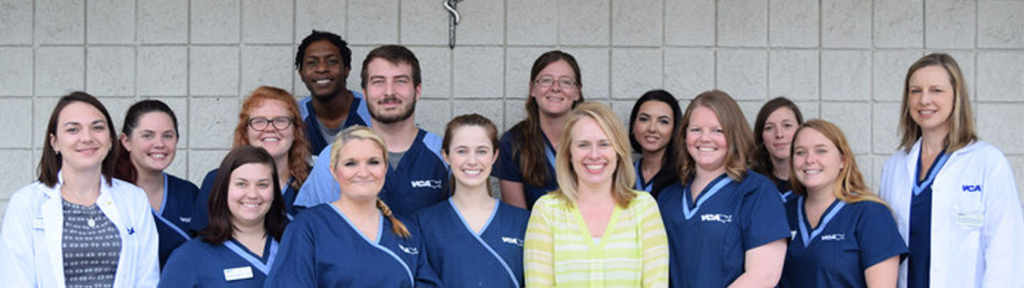 Team Picture of VCA Becker Animal Hospital