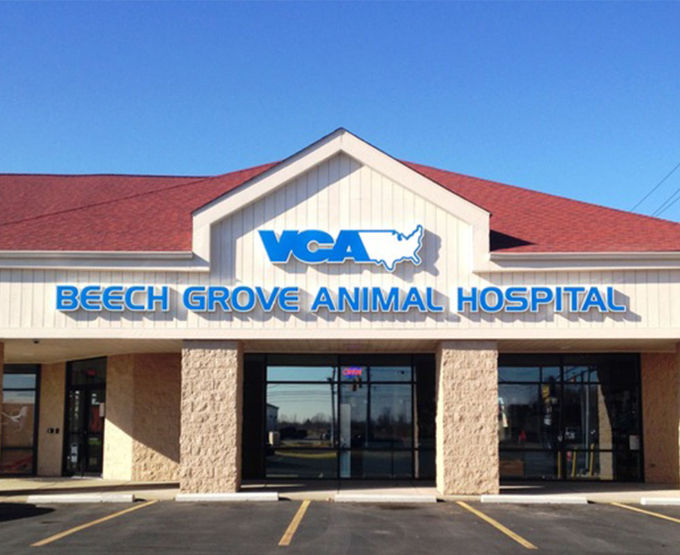 Hospital Picture of VCA Beech Grove Animal Hospital