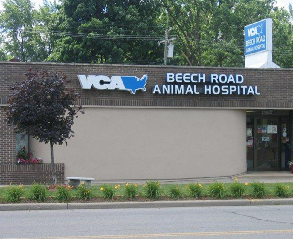 Hospital Picture of VCA Beech Road Animal Hospital
