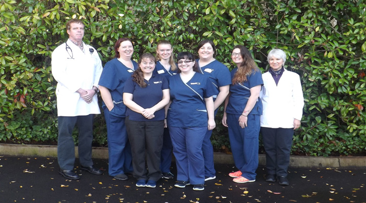 Homepage Team Picture of VCA Bellevue Animal Hospital