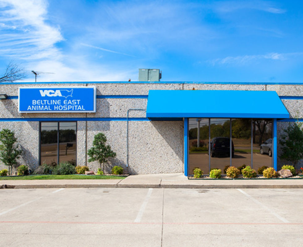 Hospital Picture of VCA Beltline East Animal Hospital