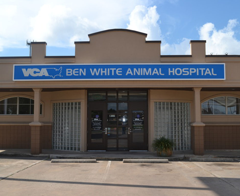 Hospital Picture of VCA Ben White Animal Hospital
