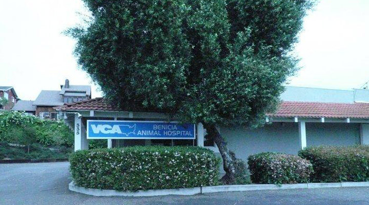 Homepage Hospital Picture of VCA Benicia Animal Hospital