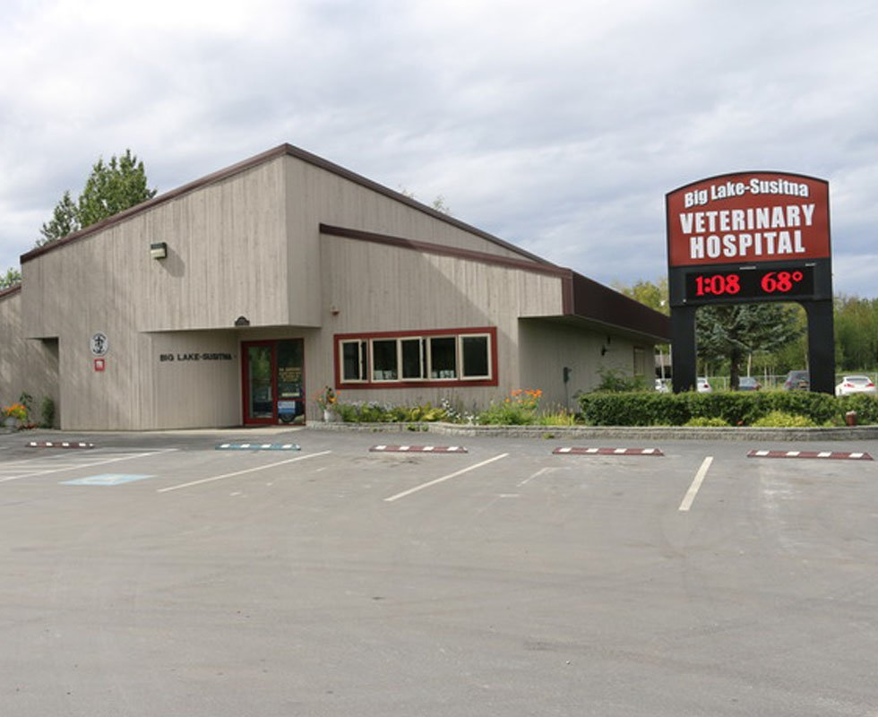 Hospital Picture of VCA Big Lake Animal Hospital