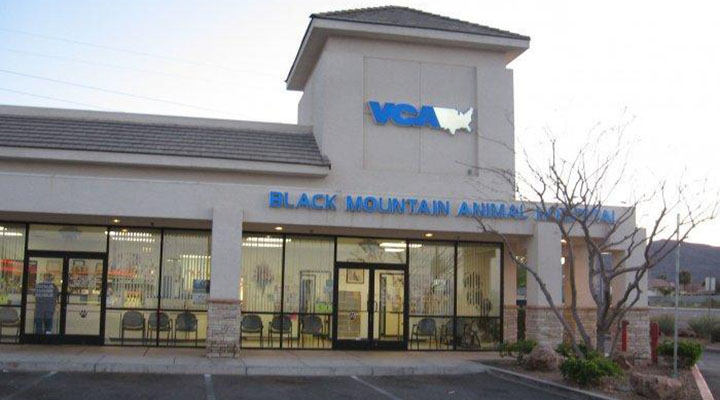 Hospital Picture of VCA Black Mountain Animal Hospital