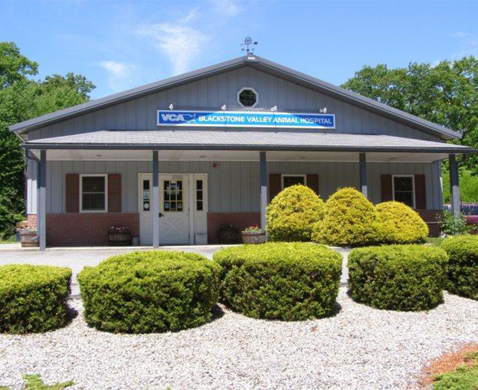 Hospital Picture of VCA Blackstone Valley Animal Hospital