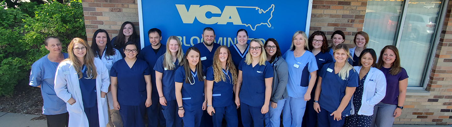 Team Photo of VCA Bloomington Animal Hospital