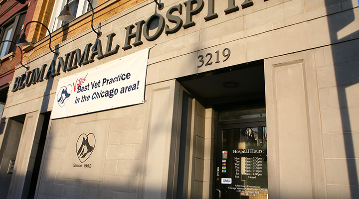 VCA Blum Animal Hospital