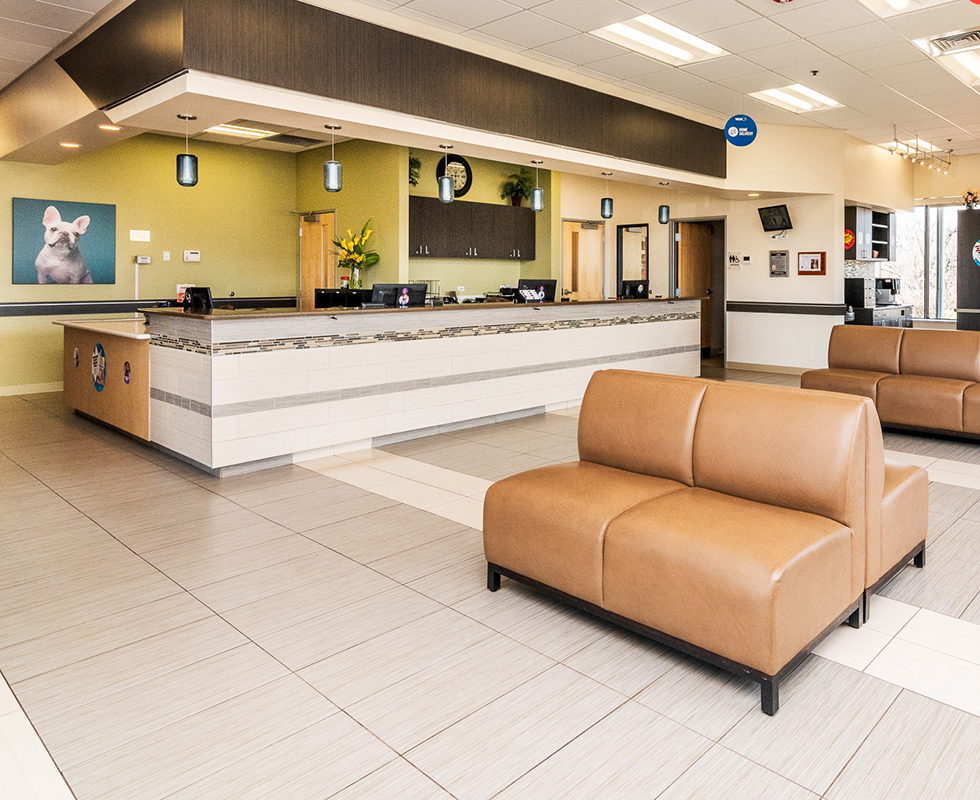 Lobby Picture of VCA Bolingbrook Animal Hospital