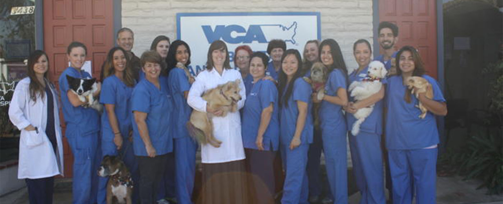 Homepage Picture of VCA Bonita Animal Hospital