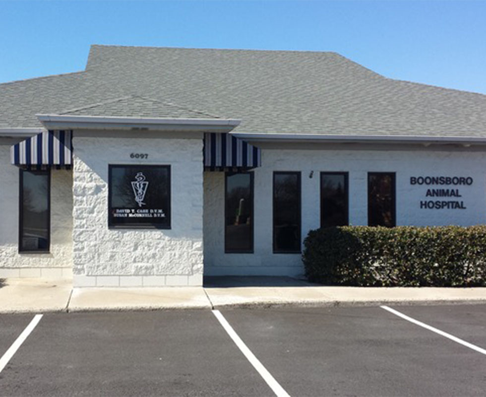 Hospital Picture of VCA Boonsboro Animal Hospital