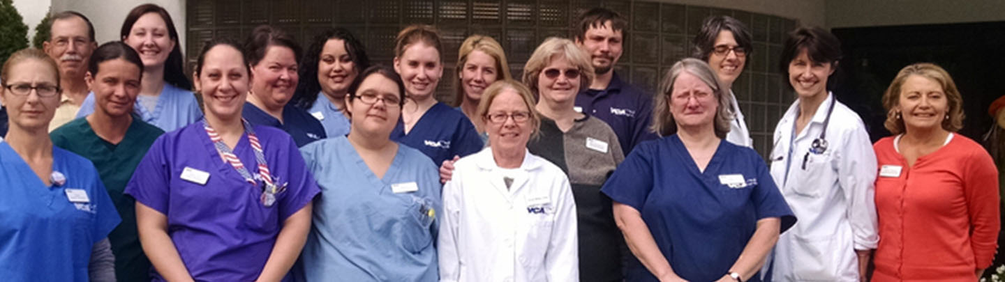 Team Picture of VCA Boston Road Animal Hospital