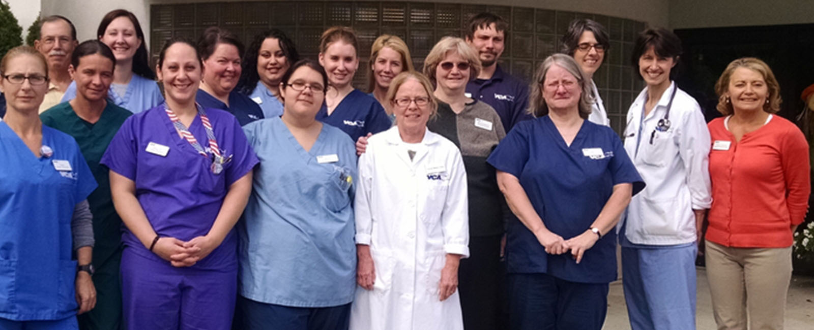 Homepage Team Picture of VCA Boston Road Animal Hospital