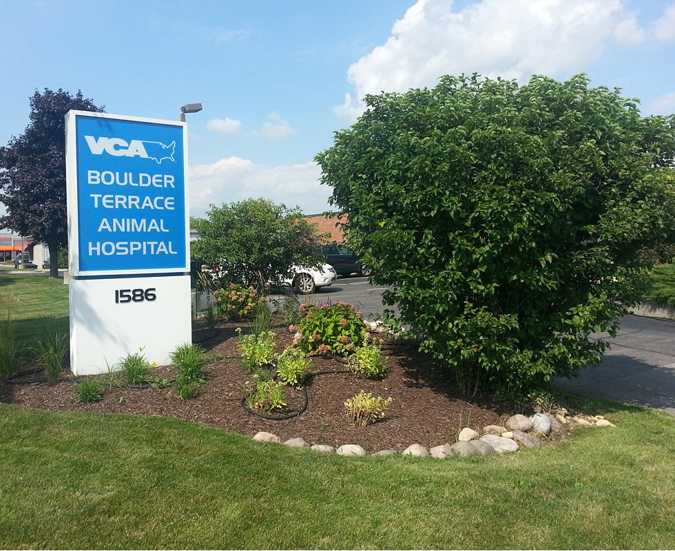 Hospital Picture of VCA Boulder Terrace Animal Hospital