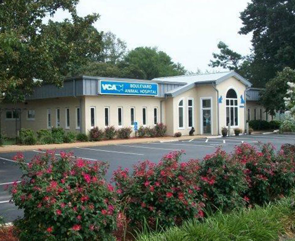 Hospital Picture of VCA Boulevard Animal Hospital