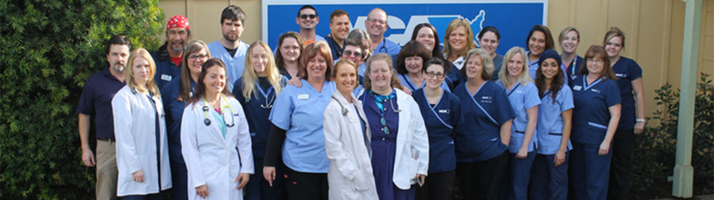 Team Picture of VCA Bradshaw Animal Hospital