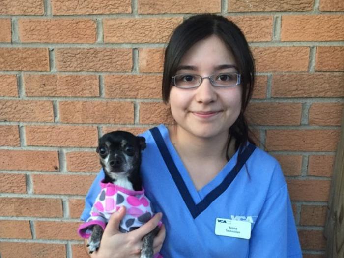 Anna Melendez Vca Burbank Animal Hospital
