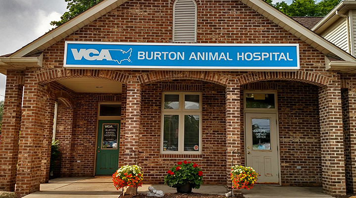 Hospital Picture of VCA Burton Animal Hospital