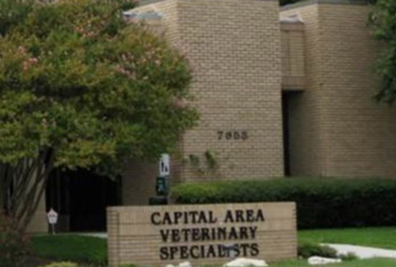 VCA Capital Area Veterinary Specialists