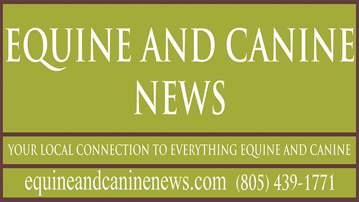 Equine and Canine News