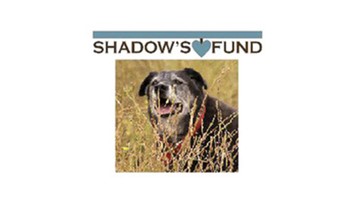 Shadow's Fund