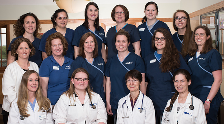 Homepage Team Picture of VCA Cascade Animal Hospital