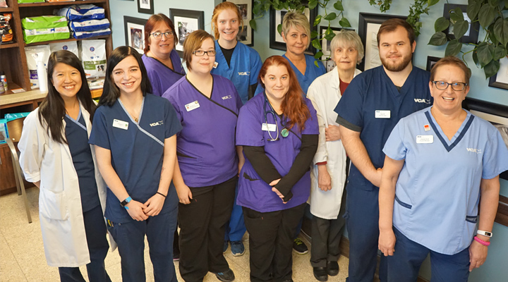 Homepage Team Picture of VCA Cedar View Animal Hospital