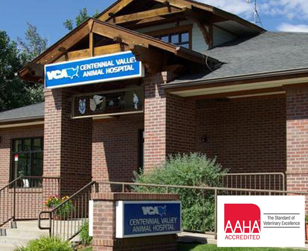 Hospital Picture of VCA Centennial Animal Hospital