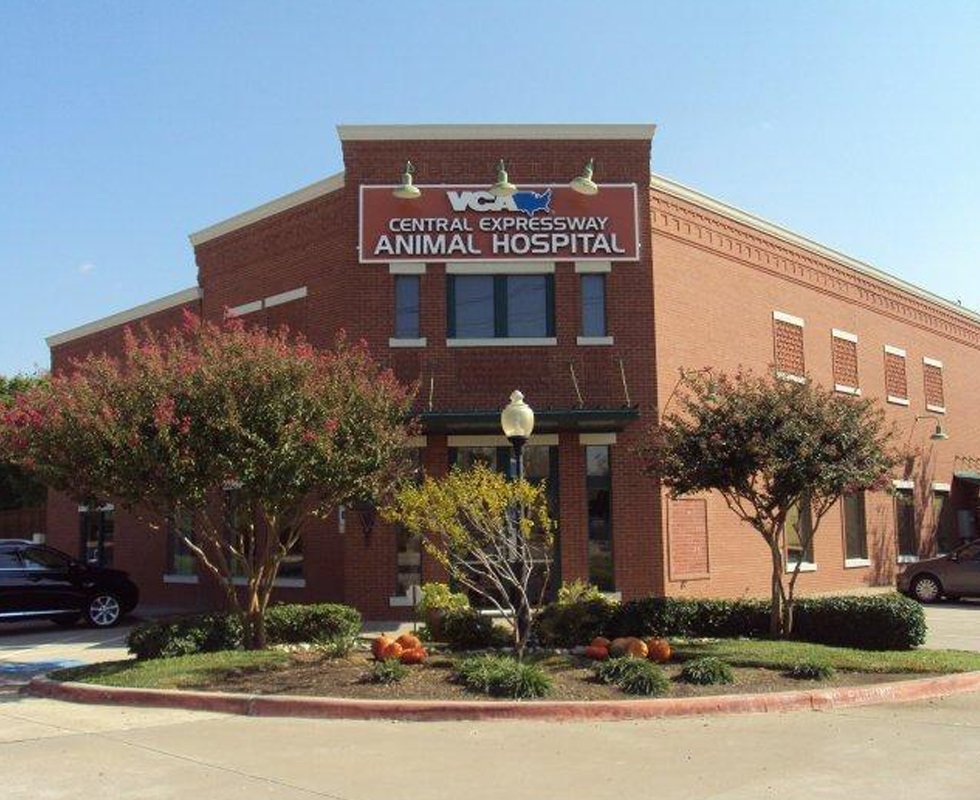 Hospital Picture of  VCA Central Expressway Animal Hospital
