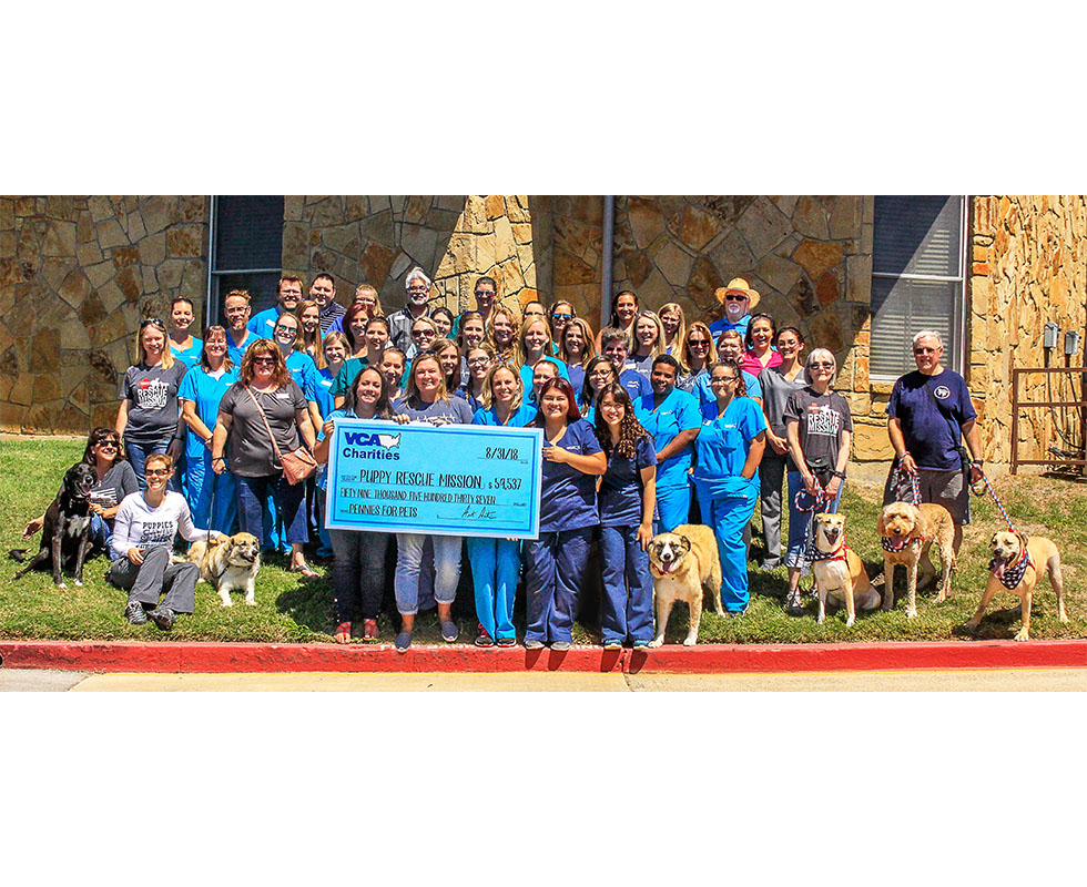 VCA Central Expressway Animal Hospital Community Partners
