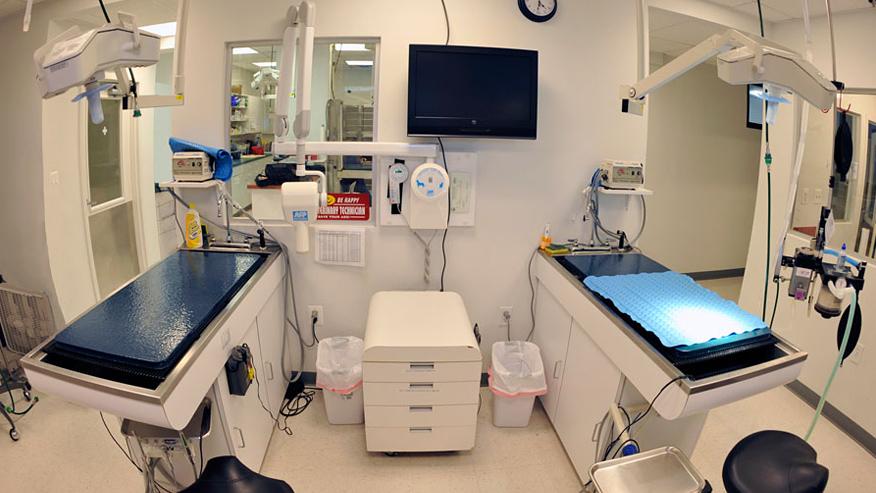 VCA Centreville Animal Hospital