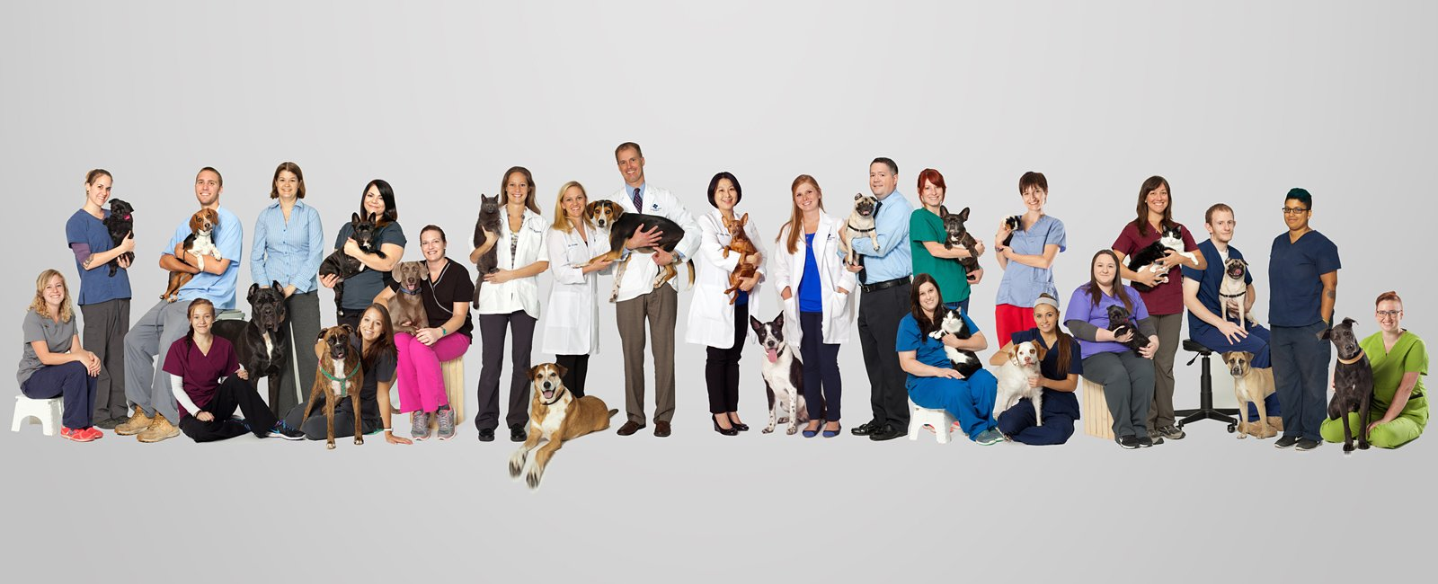 Team Picture of VCA Centreville Animal Hospital
