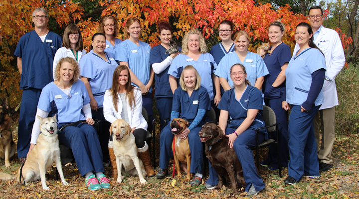 Homepage Team Picture of VCA Chanhassen Animal Hospital