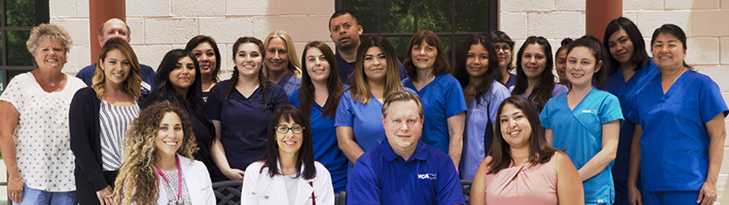 Picture of VCA Chatsworth Veterinary Center Team