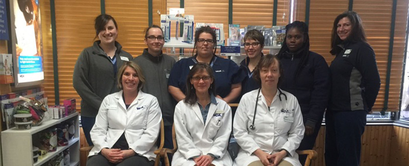 Homepage Team Picture of VCA City Cats Hospital